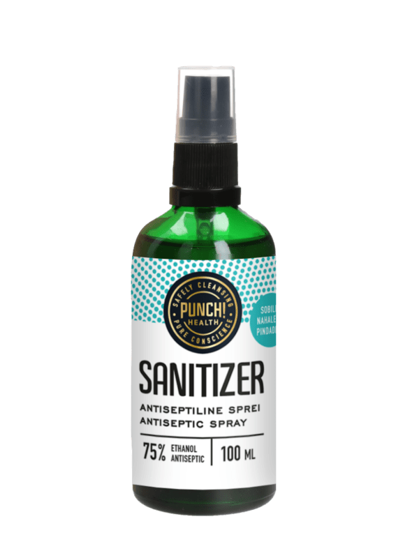 100ml pihutiga Sanitizer